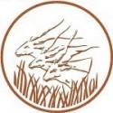 تمبرهای آفریقای مرکزی