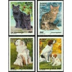 4 عدد تمبر سگها و گربه ها - فرانسه 1999