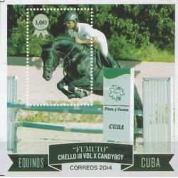 سونیرشیت اسبها - کوبا 2014