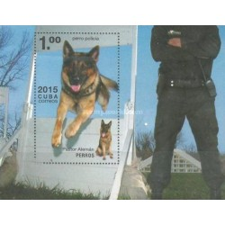 سونیرشیت سگهای کاری - کوبا 2015