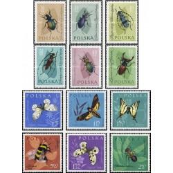 12 عدد تمبر حشرات - لهستان 1961
