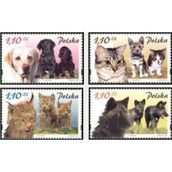 4 عدد تمبر سگها و گربه ها و توله آنها - B - لهستان 2002