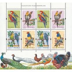 مینی شیت پرندگان گرمسیری  - لهستان 2004