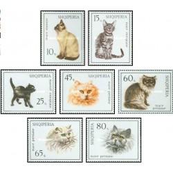 7 عدد تمبر گربه ها - 4 عدد از تمبرها گربه های ایرانی - آلبانی 1966