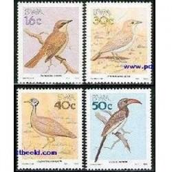 4 عدد تمبر پرندگان - آفریقای جنوب غربی 1988