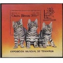 سونیرشیت گربه ها - گینه بیسائو 1985