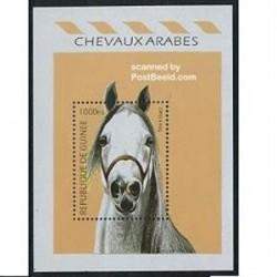 سونیرشیت اسب عرب - جمهوری گینه 1995