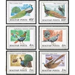 6 عدد تمبر پرندگان - طاوس و قرقاول - مجارستان 1977
