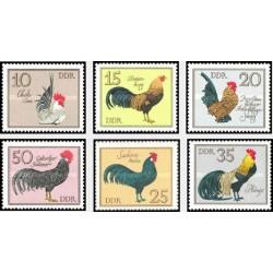 6 عدد تمبر پرندگان - خروسهای آلمانی- جمهوری دموکراتیک آلمان 1979