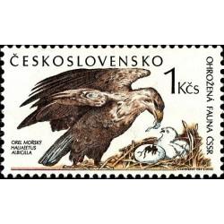 1 عدد تمبر گونه های در معرض خطر - عقاب دم سفید دریائی - چک اسلواکی 1989