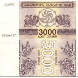 اسکناس 3000 کاپونی - گرجستان 1993