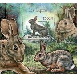 مینی شیت پستانداران - خرگوشها - 2 - کومور 2011 قیمت 14 دلار