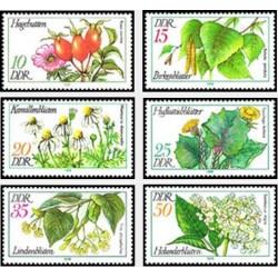 6 عدد تمبر گلها - جمهوری دموکراتیک آلمان 1978 قیت 4.95 دلار