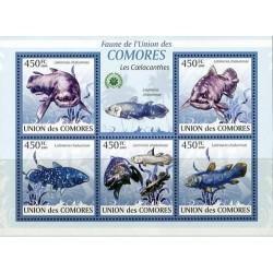 مینی شیت ماهیها  - اقیانوس هند شرقی - کومور 2009 قیمت 11.64 دلار