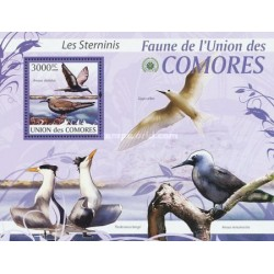 سونیرشیت پرندگان - چلچله ها - کومور 2009 قیمت 13.97 دلار