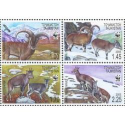 4 عدد تمبر حفاظت از طبیعت جهانی - قوچ آبی - WWF - تاجیکستان 2005 قیمت 6.8 دلار