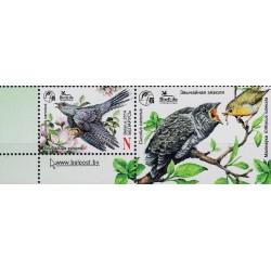 1 عدد تمبر پرنده سال - فاخته معمولی - با تب  - بلاروس 2014