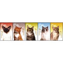 5عدد تمبر گربه ها - B - استرالیا 2005 ارزش روی شیت 3.5 دلار استرالیا
