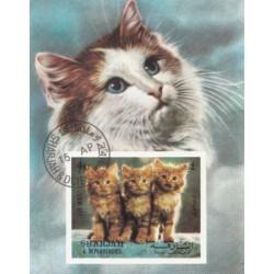 مینی شیت گربه ها - با مهر CTO - پست هوائی - شارجه 1972
