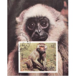 مینی شیت میمونها - با مهر CTO - پست هوائی - شارجه 1972