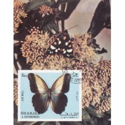 مینی شیت پروانه ها - با مهر CTO - پست هوائی - شارجه 1972