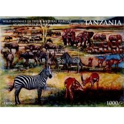سونیرشیت حیوانات وحشی در پارک بین المللی سرنگتی - تانزانیا 2011