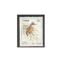 1 عدد تمبر سری پستی - پرندگان - آفریقای جنوبی 1985