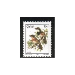 1 عدد تمبر سری پستی - پرندگان - آفریقای جنوبی 1987