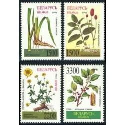 4 عدد تمبر گیاهان داروئی - بلاروس 1996