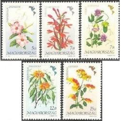 5 عدد تمبر گلهای آمریکائی - مجارستان 1991