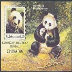 سونیرشیت پاندای چینی - کوبا 1999