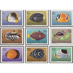 9 عدد تمبر ماهیان دریائی گرمسیری - لهستان 1967