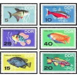 6 عدد تمبر ماهیهای آکواریومی - جمهوری دموکراتیک آلمان 1966