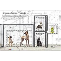 سونیرشیت حیوانات اهلی - انتخاب یک حیوان خانگی - سگ ، گربه ، طوطی - کانادا 2013