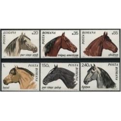 6 عدد تمبر اسبها - رومانی 1970