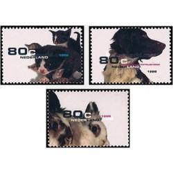 3 عدد تمبر حیوانات خانگی - هلند 1998