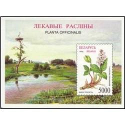سونیزشیت گیاهان بلاروس - رستنیها - بلاروس 1996