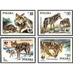 4 عدد تمبر حیوانات محافظت شده - گرگها - WWF - لهستان 1985
