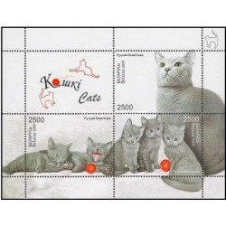 سونیرشیت گربه ها - نژاد روس آبی- بلاروس 2009