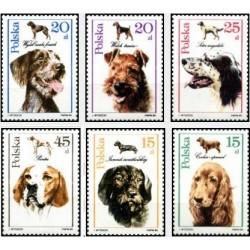 6 عدد تمبر سگ ها - لهستان 1989