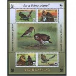 سونیرشیت پرندگان شکاری - آذربایجان 2011
