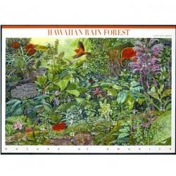 مینی شیت جنگلهای بارانی هاوایی - آمریکا 2010