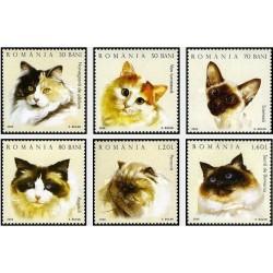 6 عدد تمبر گربه ها - یکی از تمبرها با تصویر گربه ایرانی - رومانی 2006