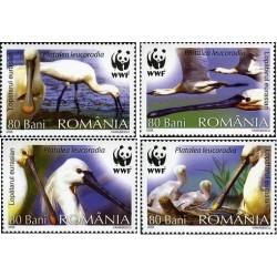 4 عدد تمبر پرنده کفچه نوک ارواسیائی - با تب - WWF - رومانی 2006