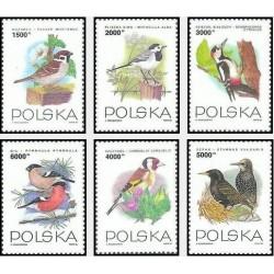 6 عدد تمبر پرندگان - لهستان 1993 قیمت 5 دلار