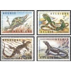 4 عدد تمبر باغ وحش آنت وپ  - بلژیک 1965