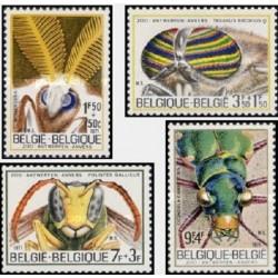 4 عدد تمبر باغ وحش آنتوب - حشرات - بلژیک 1971