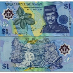 اسکناس پلیمر 1 رینگیت - دارالسلام برونئی 1996