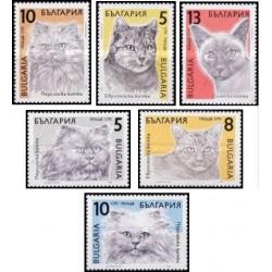 6 عدد تمبر گربه ها - 3 عدد از تمبرها تمبر گربه ایرانی - بلغارستان 1989