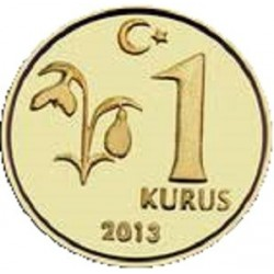 سکه 1 کروز - برنجی - ترکیه 2013 غیر بانکی